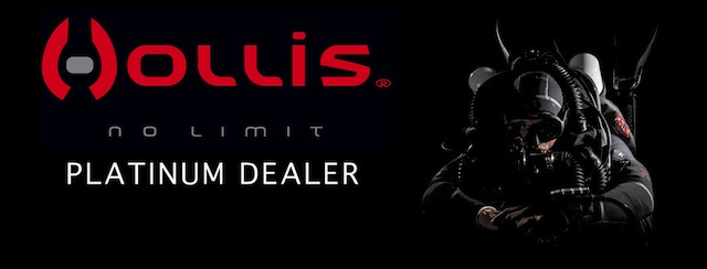 Hollis Platinum Dealer small